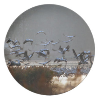 Flying cranes plate