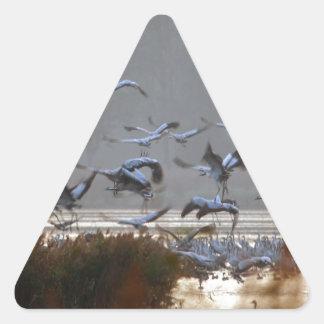 Flying cranes triangle sticker