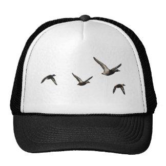 Flying Duck Hat