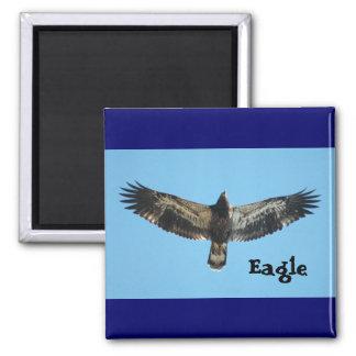 Flying Eagle Magnet