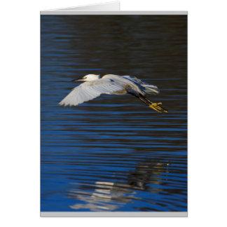 Flying Egret Card