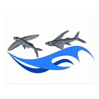 Flying Fish (Exocet) Postcard