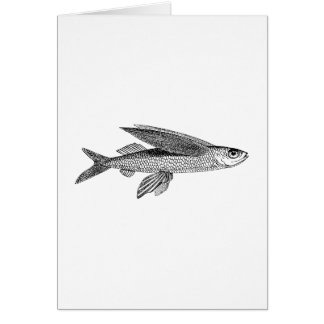 Fly fishing cards fly fishing greeting cards fly fishing for Flying fish drawing