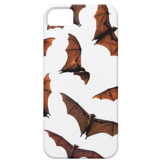 Flying fox fruit bats circling in sky iPhone 5 case