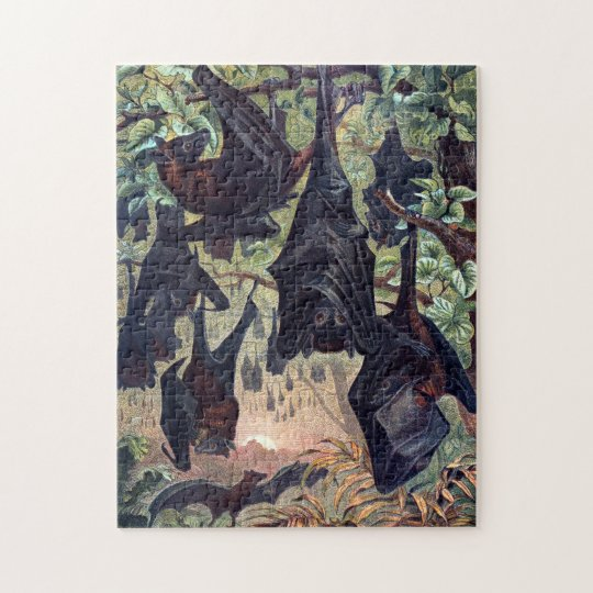 Flying Fox Puzzle