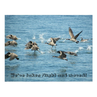 Flying Geese Photo Change of Address Postcard