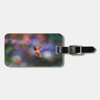 Flying Hummingbird and Colourful Background Bag Tag