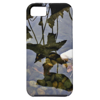 Flying Koi iPhone 5 Cover