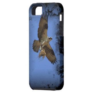 Flying Osprey (Fish Hawk)  iPhone 5 Case