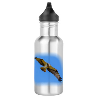 Flying osprey with a target in sight 532 ml water bottle
