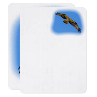 Flying osprey with a target in sight card