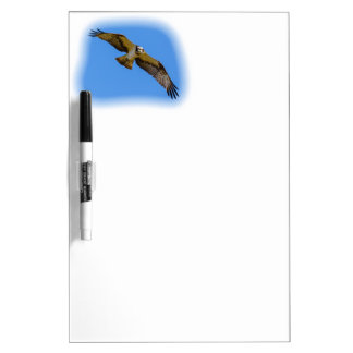 Flying osprey with a target in sight dry erase board