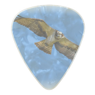 Flying osprey with a target in sight pearl celluloid guitar pick