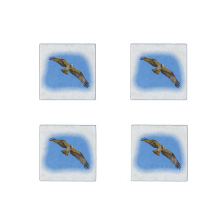 Flying osprey with a target in sight stone magnets