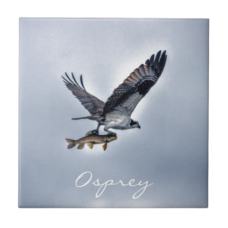 Flying Osprey with Walleye Fish HDR Photo Tile