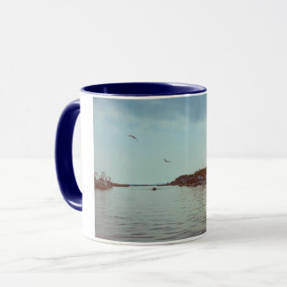 Flying over the lagoon mug