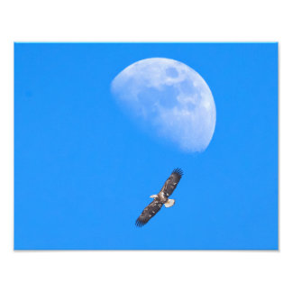 Flying Past the Moon Photograph