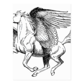 flying Pegasus Postcard
