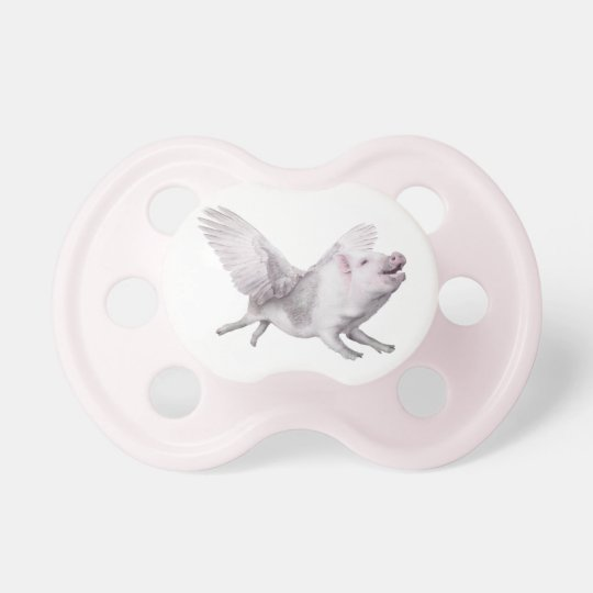 Flying Pig Creative Baby Shower Pacifier Decorate