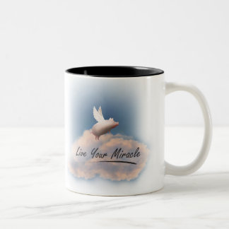 flying pig live your miracle mug