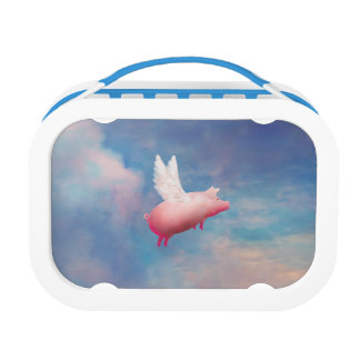 flying pig lunch box
