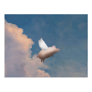 flying pig postcard