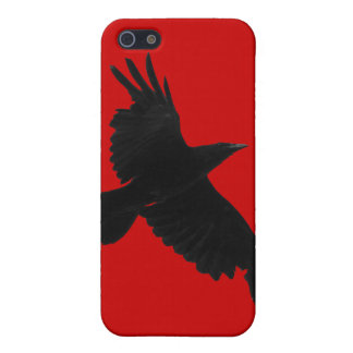 Flying Raven Wildlife Raven-Lover iPhone 4/4S Skin iPhone 5/5S Case