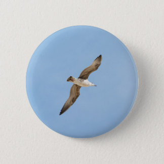 Flying seagull 2 inch round button