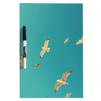 Flying seagulls, beautiful, original gifts dry erase board