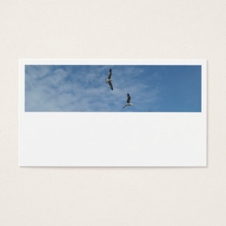 Flying Seagulls Business Cards