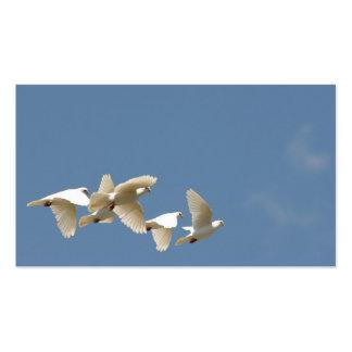 Flying white doves pack of standard business cards