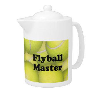 FM, Flyball Master 5,000
