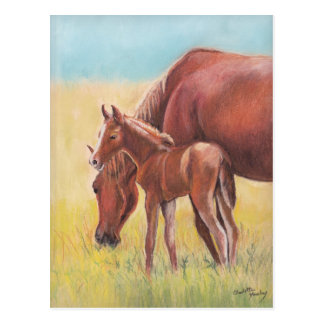 Foal and Mare Horse Art Postcard