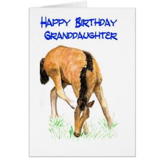 'Foal' Birthday Card for Granddaughter