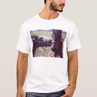 foal bites halter T-Shirt