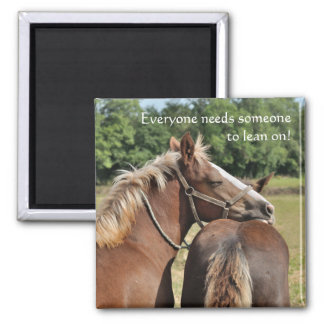 Foal friendship magnet