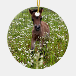 Foal in field round ceramic ornament