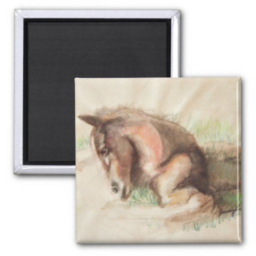 Foal Relaxing Fridge Magnet