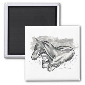 Foal Square Magnet