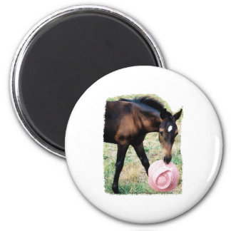 Foal with Pink Hat 2 Inch Round Magnet