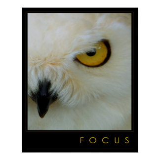 FOCUS 24 x 30 Print + Other Sizes