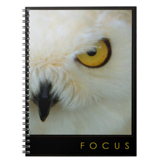 FOCUS Notebook Journal whatever-book Owl