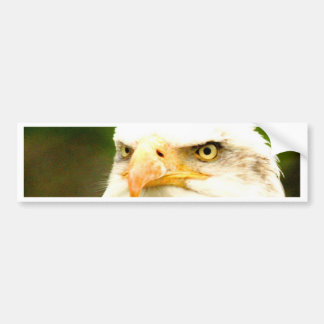 Focus on goal and success eagle bumper sticker