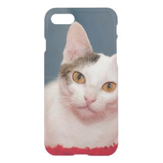 Focused Kitty Cat iPhone 7 Case