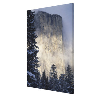 Fog Enveloping Mountain 2 Canvas Print