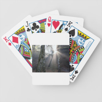 fog light forest rural landscape bicycle playing cards
