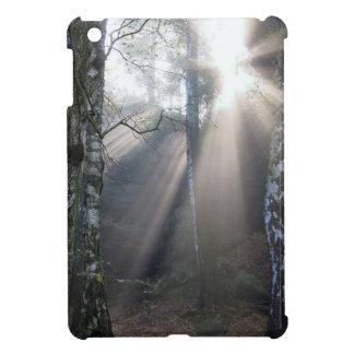 fog light forest rural landscape iPad mini covers