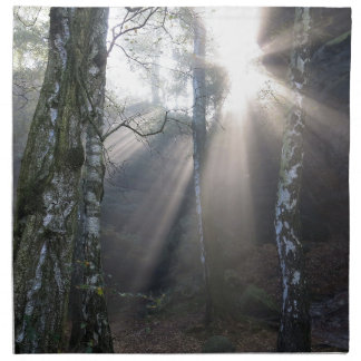 fog light forest rural landscape napkin