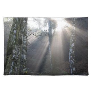 fog light forest rural landscape placemat