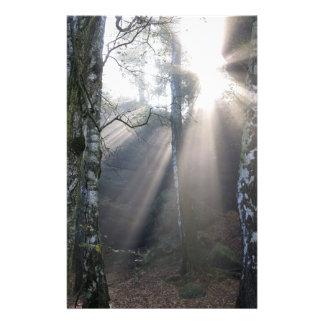 fog light forest rural landscape stationery
